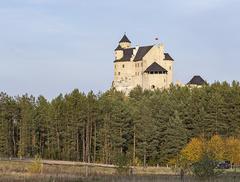 Tożsamość i rozrywka – nowe polskie zamki